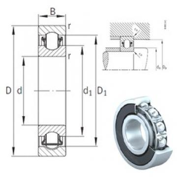 55 mm x 100 mm x 21 mm  INA BXRE211-2HRS needle roller bearings