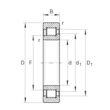 55 mm x 120 mm x 43 mm  INA SL192311 cylindrical roller bearings