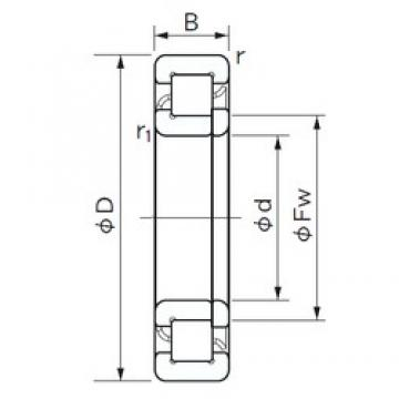 30 mm x 62 mm x 20 mm  NACHI NUP 2206 cylindrical roller bearings