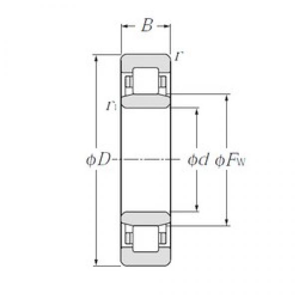 95 mm x 145 mm x 24 mm  CYSD NU1019 cylindrical roller bearings #2 image